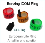 The New Benzing Icom Ring